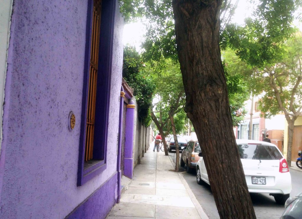 webandsun web and sun lima miraflores rue violet pérou