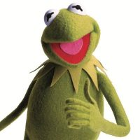 kermit thumbs up webandsun